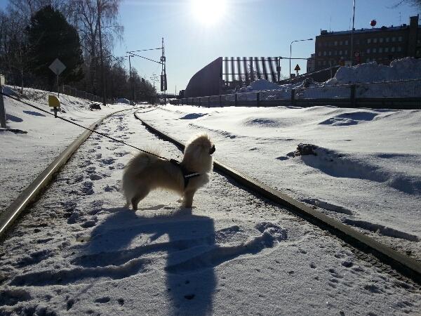Min kärlek till sol och värme