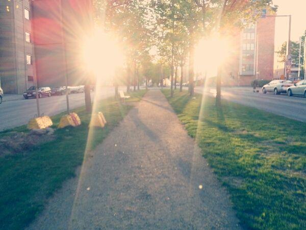 ljus morgon