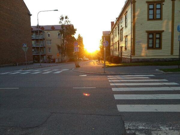 morgonsol