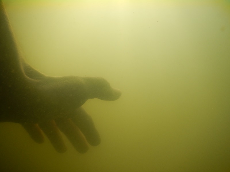 långpass 16.8.2014 simning