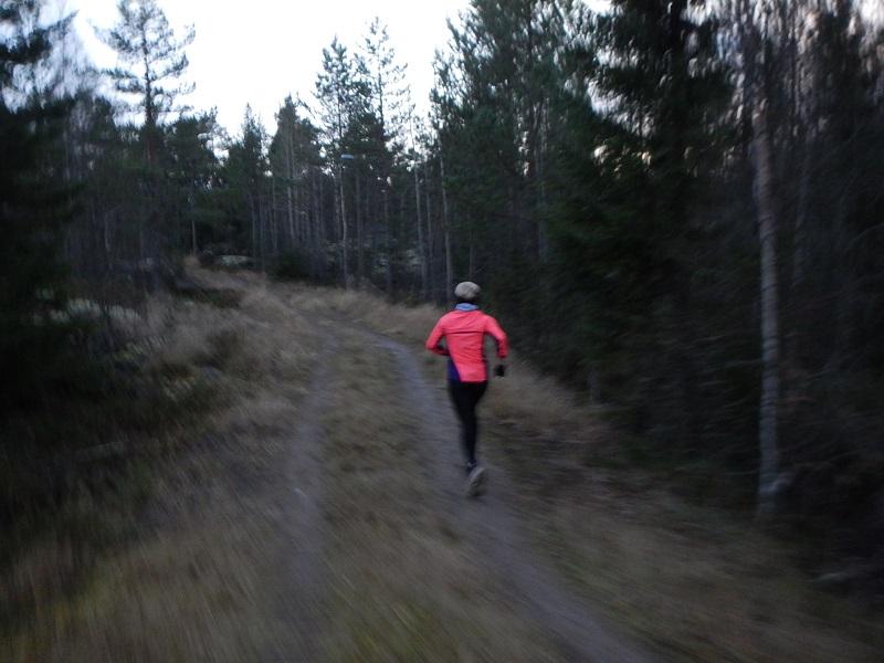 öjbergslöpning 2
