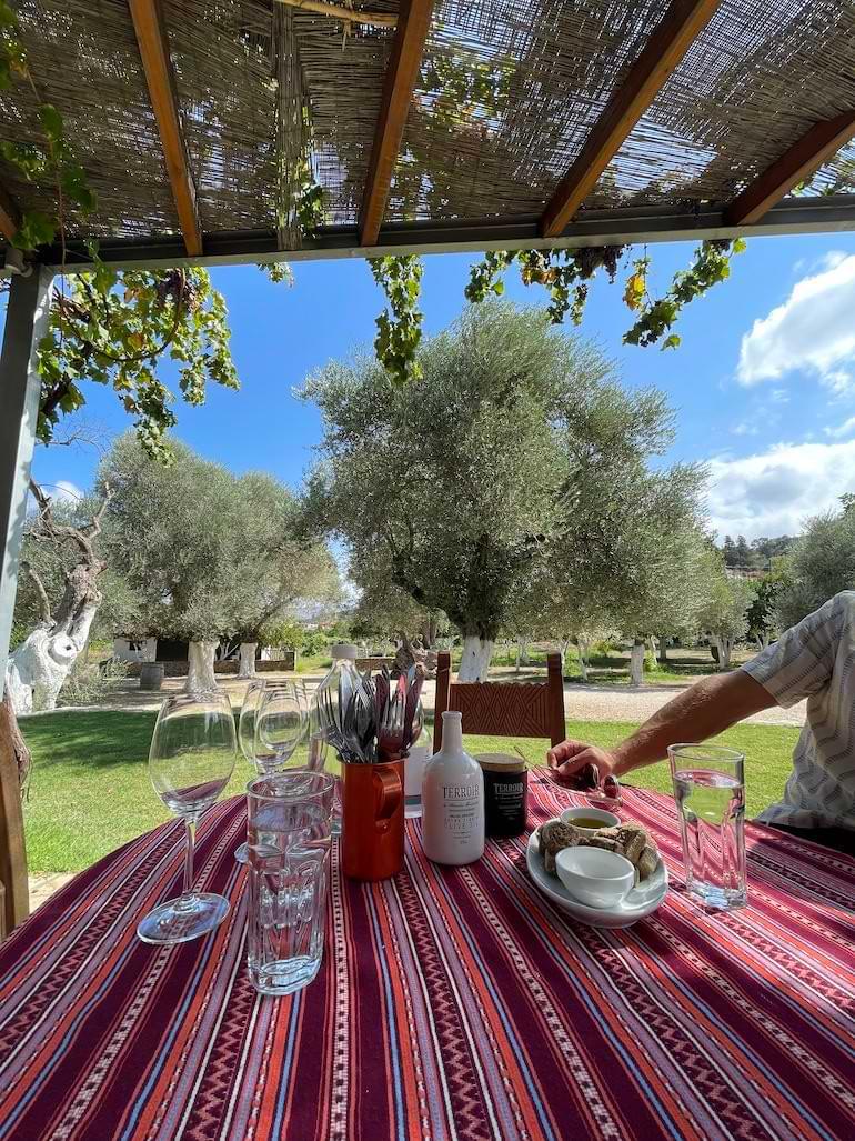 vinprovning chania grekland